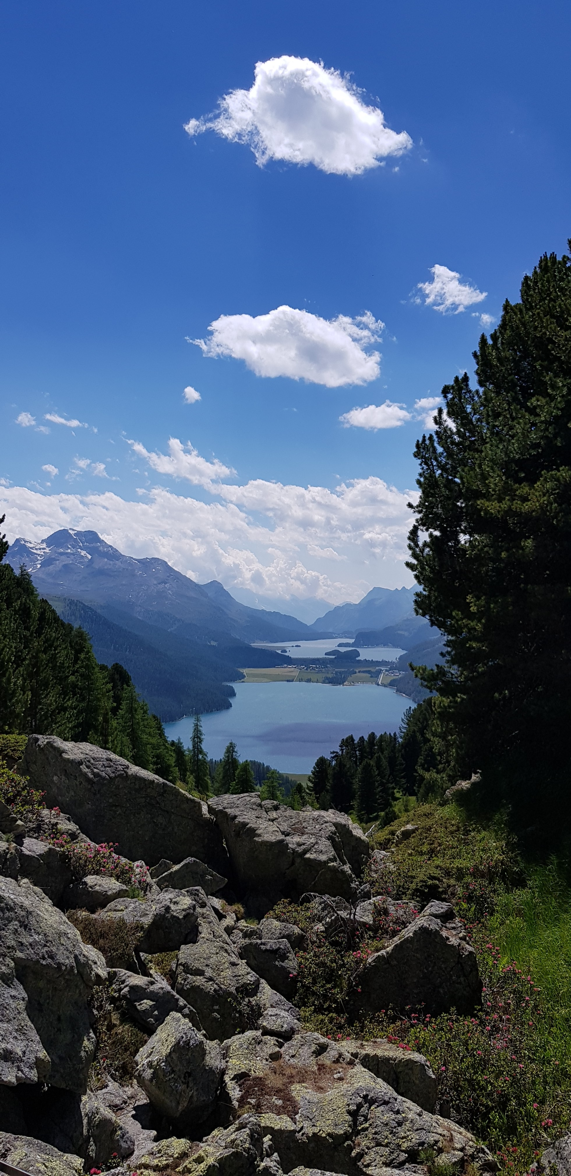 Engadine, St. Moritz, Crap Alv, view on Furtschellas, Lake Silvaplana, Lake Sils