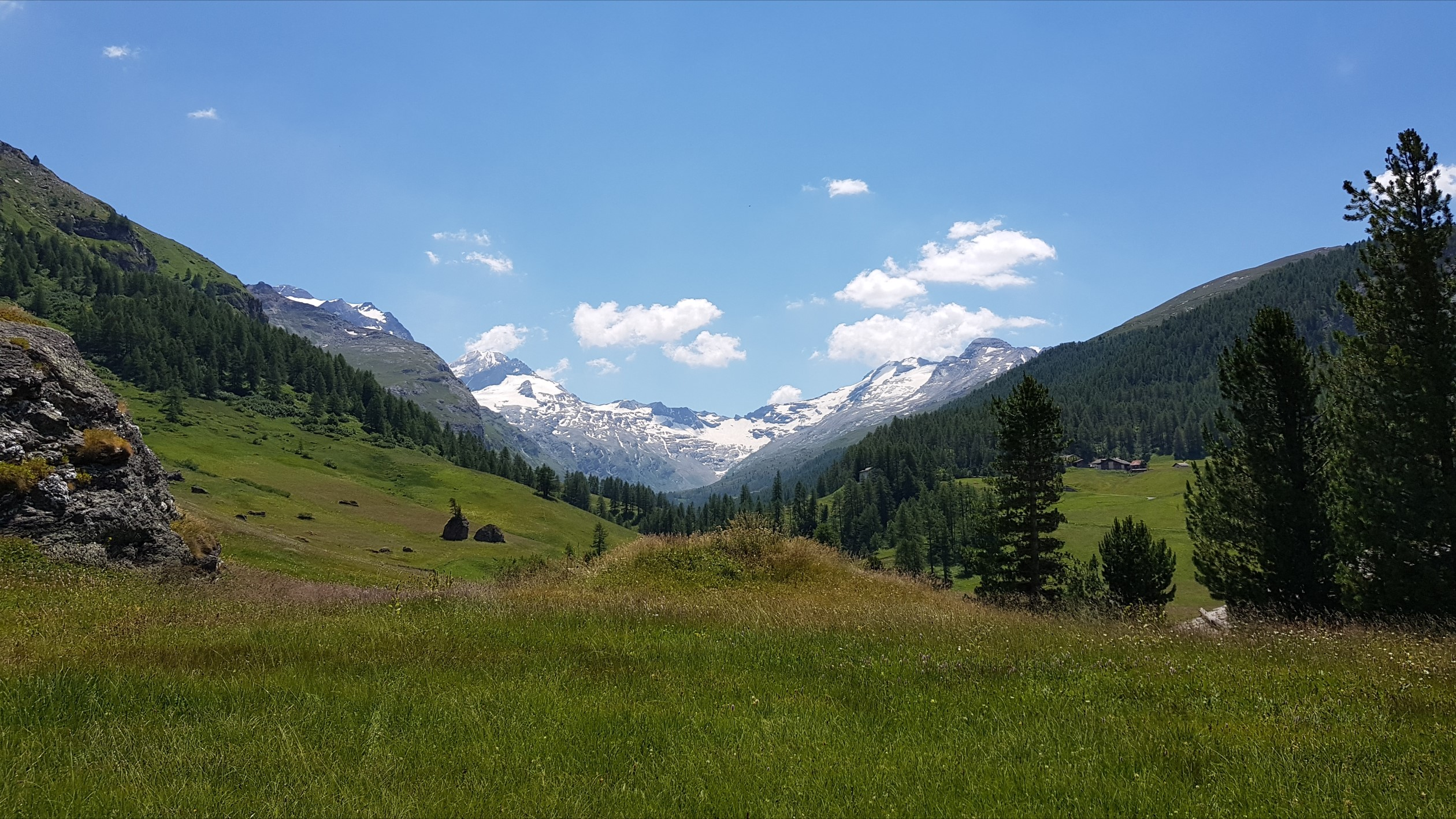 Engadine, Sils, Platta, view in direction Val Fex