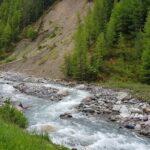 Engadine, National Park, S-chanf, Varusch, Val Trupchun, Alp Trupchun, Ova da Varusch