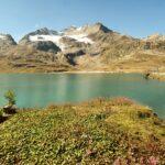 Engadine, Pontresina, Bügliet, Alp di Lagh, view on Lago Bianco and Cambrena Glacier