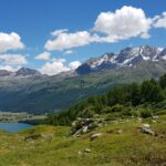Engadine, Sils, Pro Güvel, view in direction Sils, Piz Corvatsch with Organizational Science AG Logo